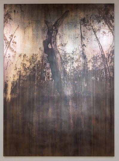 Michael Joo, 'Entasis (bark)', 2016