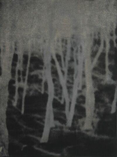 Eva Schlegel, 'Untitled (153)', 2008
