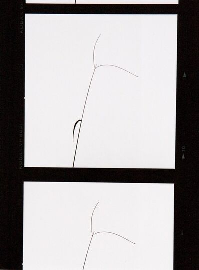Yasuhiro Ishimoto, 'Untitled', 1980s-1990s