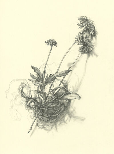 Amanda Besl, 'Widow's Weeds', 2014