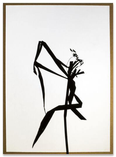 Jose Luis Santalla, 'Cyperus House  (Serie Shadows)', 2016