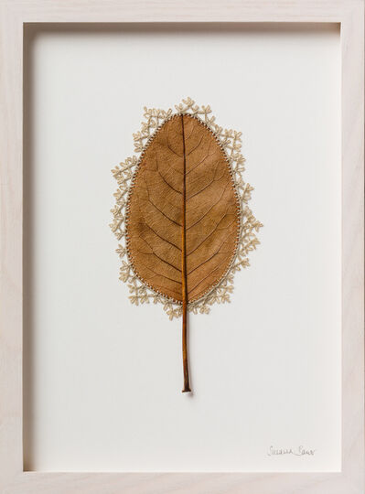 Susanna Bauer, 'Adornment XIII', 2017