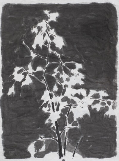 Wu Yiming 邬一名, 'The Gingko', 2013