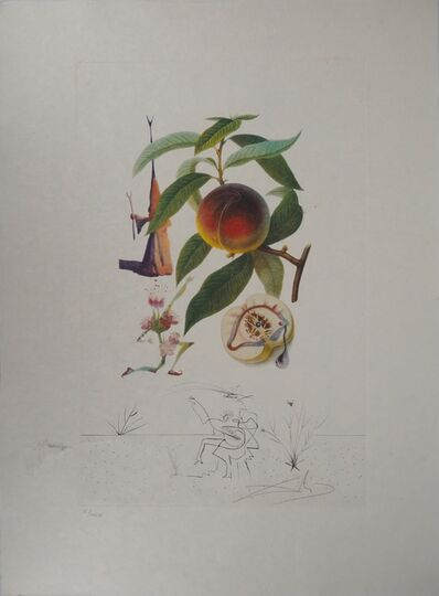 Salvador Dalí, 'Flordali, Pecher Penitent', 20th Century