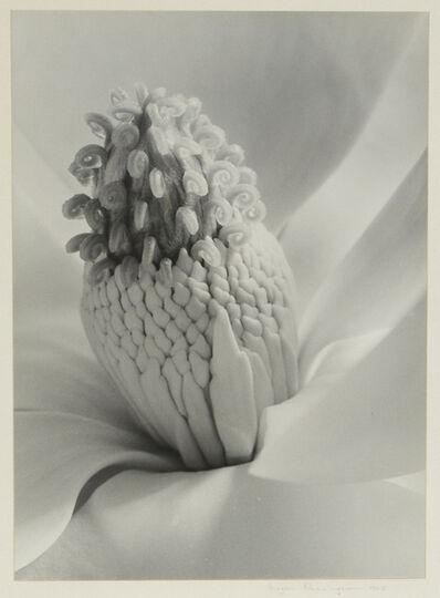 Imogen Cunningham, 'Tower of Jewels', 1925