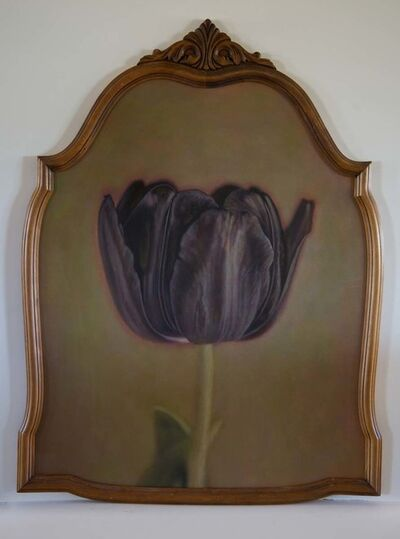 Kate Breakey, 'Black Tulip IV, from Black Tulip Series', 2016