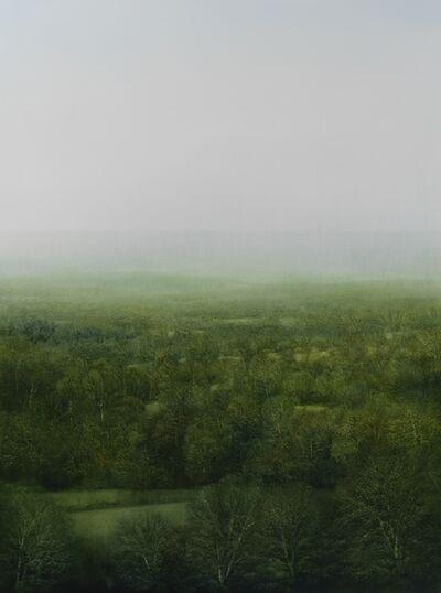 Peter Brooke, 'Celestial Forest', 2015