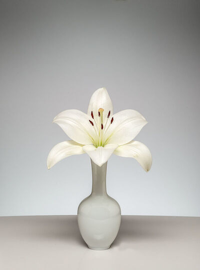 Gary Faye, 'White Lily', 2016