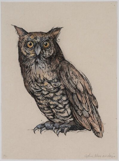 John Alexander, 'Wise Old Owl', 2009