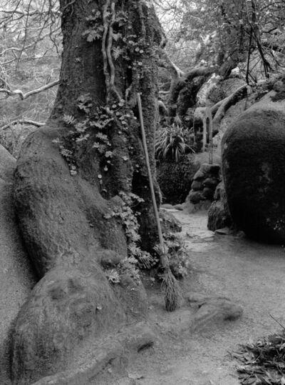 OUKA LEELE, 'Nuestras hermanas las plantas, esas santas a las que nadie reza', 1988