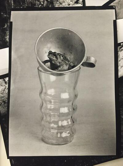 Robert Langham III, 'Toad Cup', ca. 2016