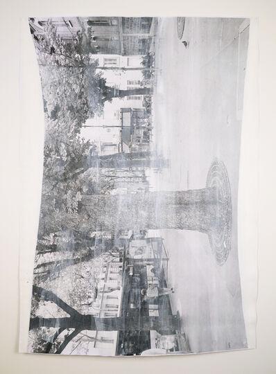 David Thomas, 'Impermanences, Pigeon Visiting Paris, White + Grey', 2015