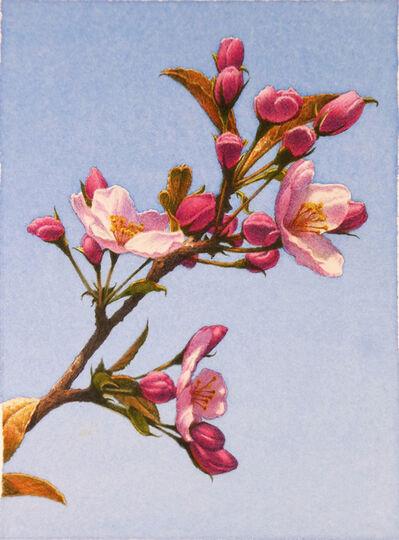 Frederick Brosen, 'Apple Blossoms', 2017
