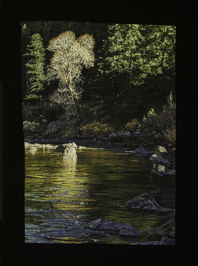 Carol Shinn, 'Quiet Riverside', 2021