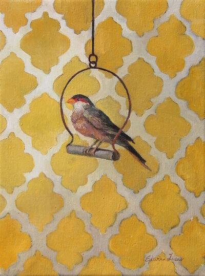 Edwina Lucas, 'Pretty Bird', 2016