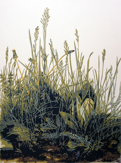 Vik Muniz, 'The Great Turf, after Durer ', 2010