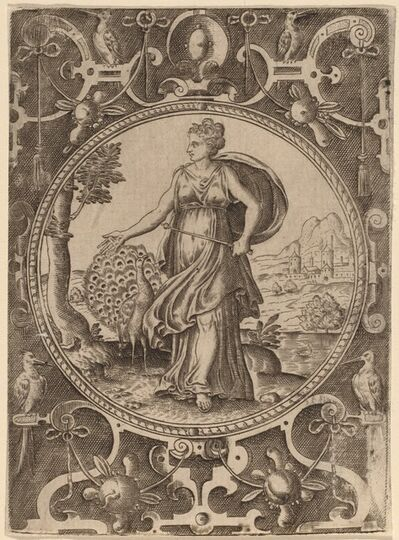 Abraham de Bruyn, 'Juno'