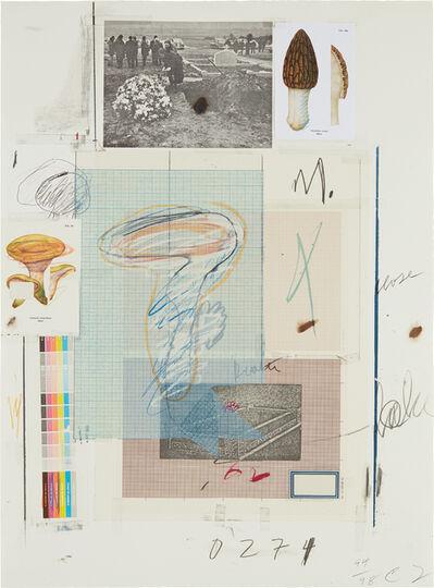 Cy Twombly, 'Natural History Part I Mushrooms: No. VII', 1974