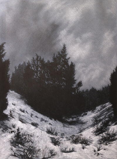 Tom Howard, 'Winter Stand', 2005