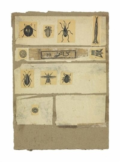 Robert Rauschenberg, 'Untitled (Insects) '