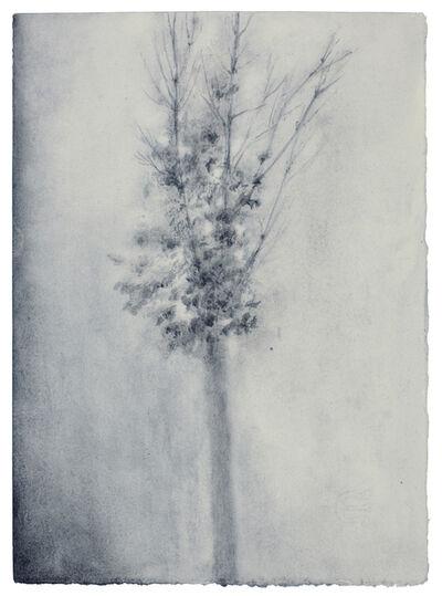 Lucas Reiner, 'Via Dardanelli #2', 2011