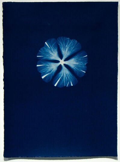 Pipo Nguyen-duy, 'Untitled F36', 1998