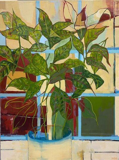 Jacqueline Boyd, 'Plant and Studio Window', 2020