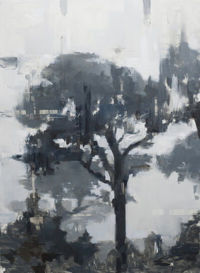 Jon Doran, 'Trees in the Mist 5', 2019