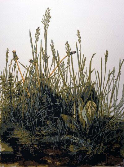 Vik Muniz, 'The Great Turf, after Durer', 2010