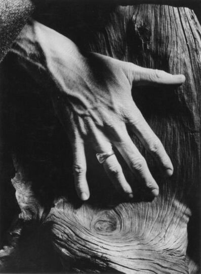 Minor White, 'Untitled', c. 1964