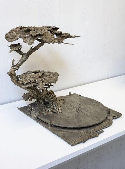 Martin Erik Andersen, 'Tree, Alchemilla mollis', 2019