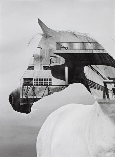 Shannon Bool, 'Horse of Oblivion 6', 2019