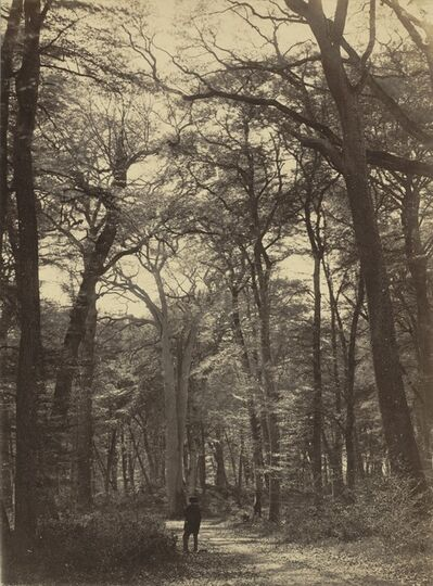 Constant Alexandre Famin, 'Forest Scene', ca. 1865