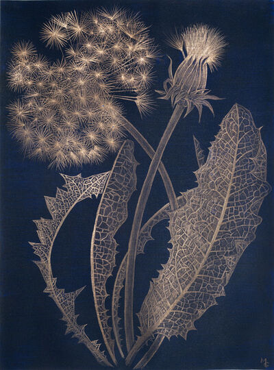 Margot Glass, 'Blue Dandelion', 2019