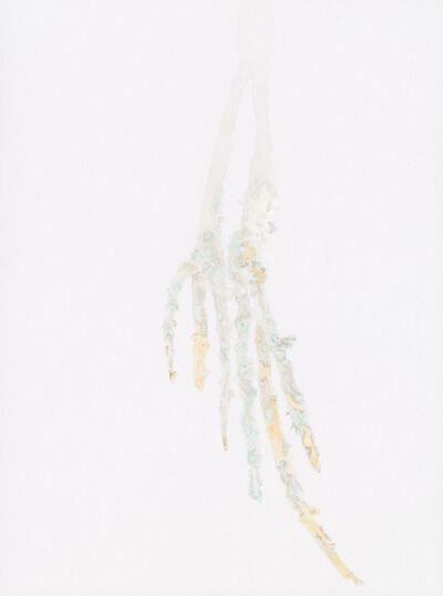 Irene Kopelman, 'On Mangroves', 2015