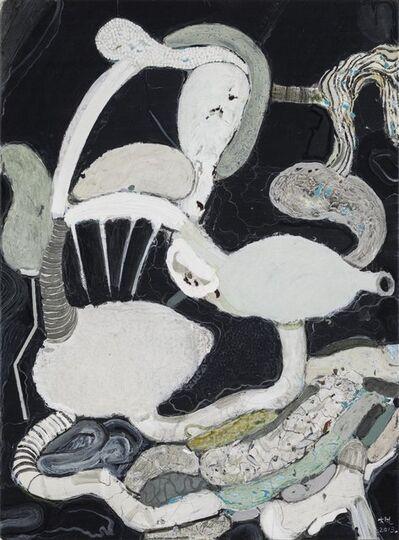 Ji Dachun 季大纯, 'Plastic Organs', 2013