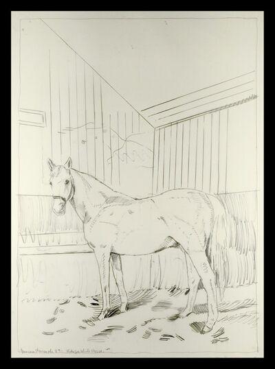 Duncan Hannah, 'Study for White Horse', 1989