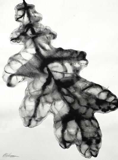 Barbara Edelstein, 'Reflections • Nature Series #4', 2019