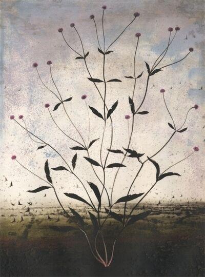 Michael Canning, 'Insomnia', 2012
