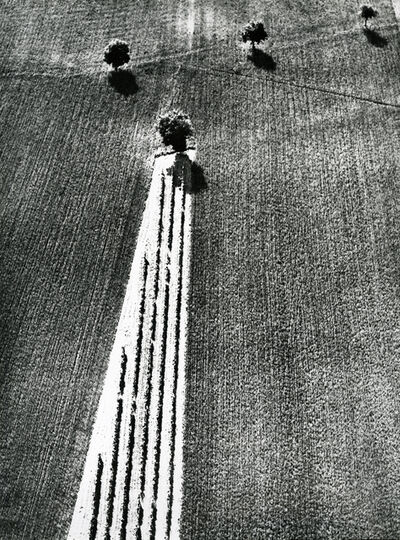 Mario Giacomelli, 'from, On Being Aware of Nature', 1954-2000