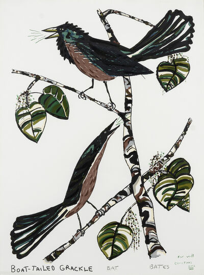 David Bates, 'Boat-Tailed Grackle', 1982