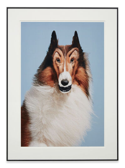 John Waters, 'Reconstructed Lassie', 2012