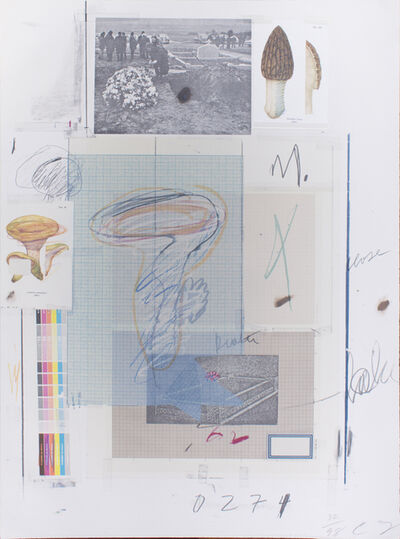 Cy Twombly, 'Natural History, Part 1, Mushrooms N. VII', 1974