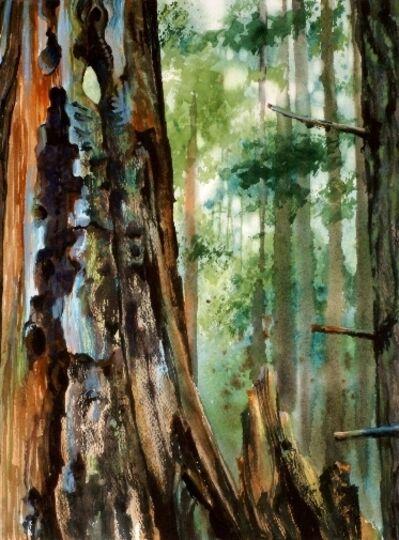 Suze Woolf, 'Remnants of an Older Burn', 2008