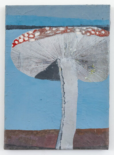 Pieter Jennes, 'Fungus', 2019