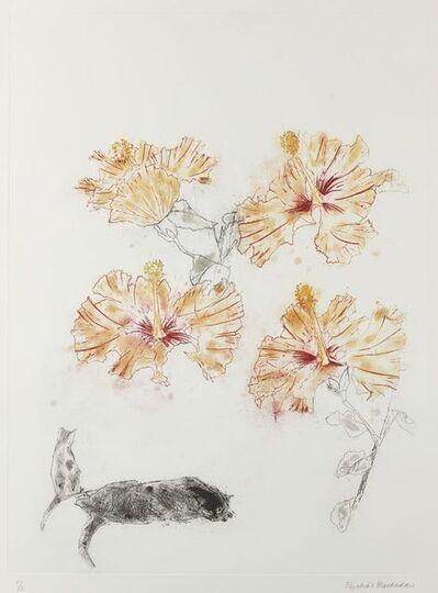 Elizabeth Blackadder, 'Hibiscus & Cats', 1985