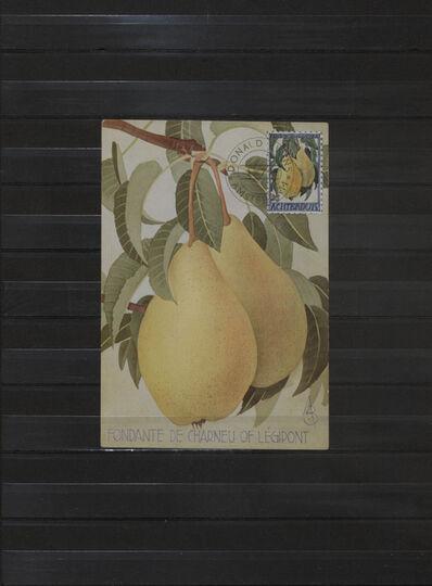 Donald Evans, 'Achterdijk. 1966. Pears of Achterdijk (Fondante de Charneu of Legipont)', 1972