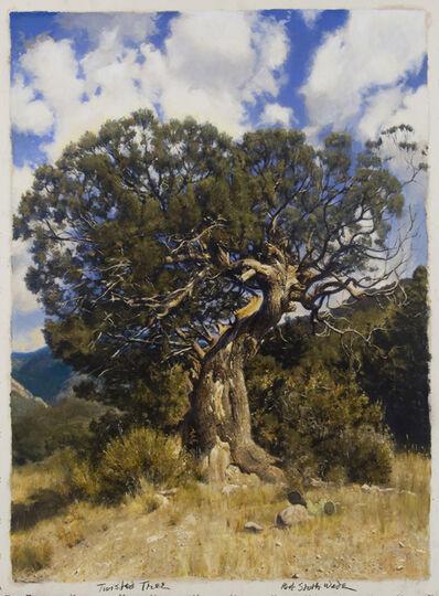 Bob Stuth-Wade, 'Twisted Tree', 2014