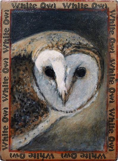 Ed Musante, 'Barn Owl / White Owl'