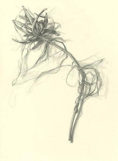 Amanda Besl, 'Dark Eyes', 2014